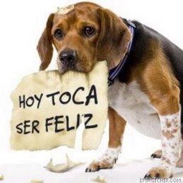 hoy-toca-ser-feliz